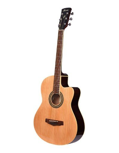 acoustic guitar price in india